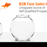 B2B Fast Sales Hits - Untapped source of Self Qualified Prospects 2