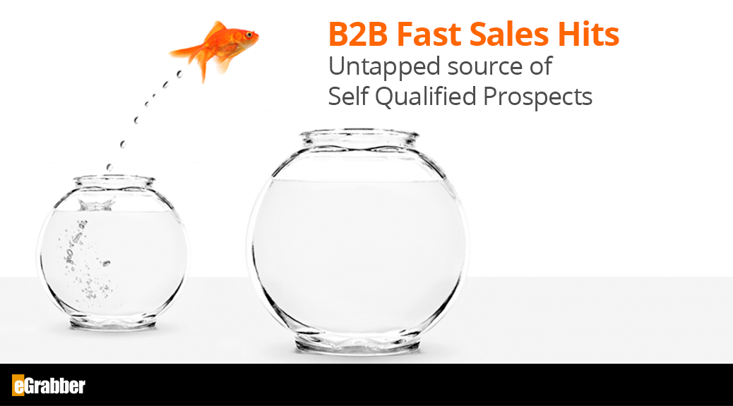 B2B Fast Sales Hits - Untapped source of Self Qualified Prospects 1